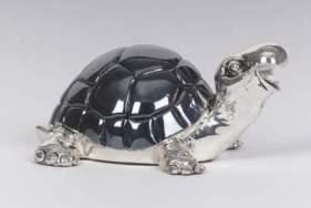Dark Shiny Turtle