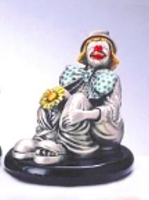 Silver Clown Daisy